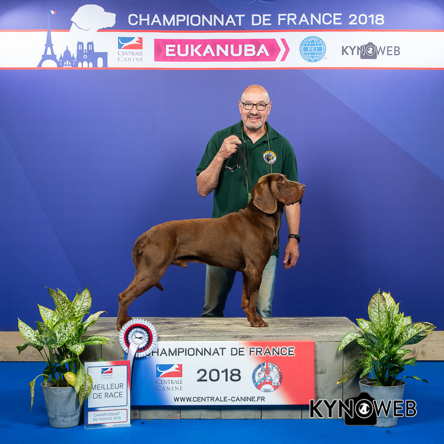 R 4476 championnat de france lr 2018 kynoweb 20180603 12 49 02 ky3 0274 1